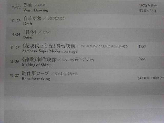 DSC04032_20100305110100.jpg