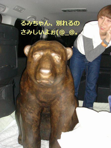 DSC08063.jpg