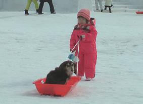 2010-02-11yukimaturi2
