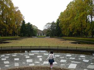 2011-10-30.jpg