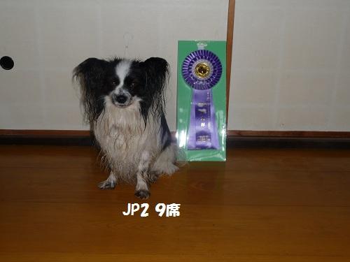 FCI JP2