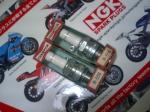 チャンピオンレースプラグ01