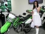 Kawasaki NINJA250R08