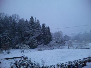 4月17日朝雪