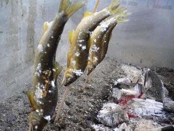 鮎塩焼き1