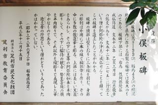 IMGK4640s.jpg