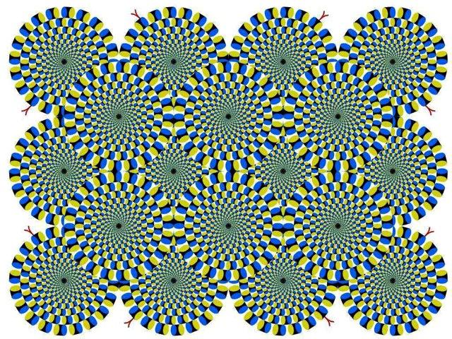 778e17bd.jpg