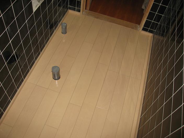 N邸トイレ改築 (1)