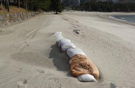強風で砂丘のよう