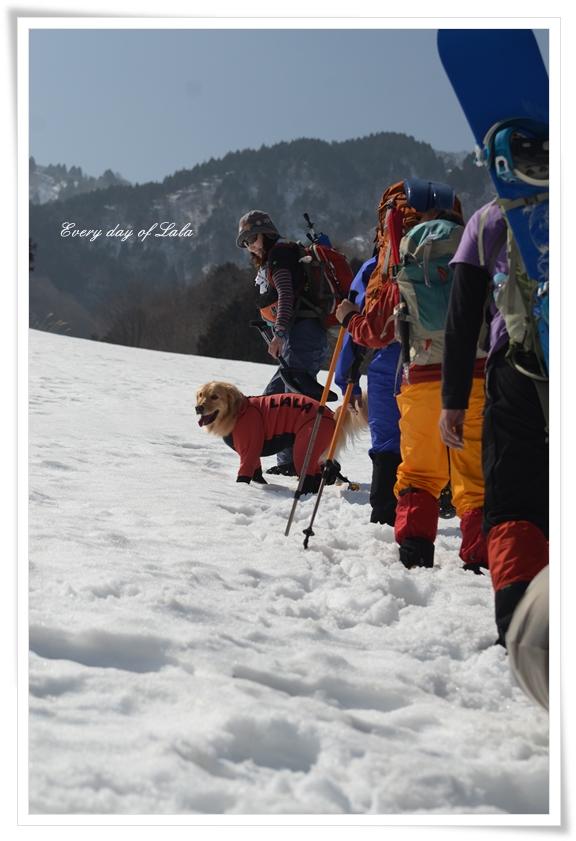 登山部と雪山へ201303