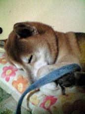 kyukei10_20100122221829.jpg