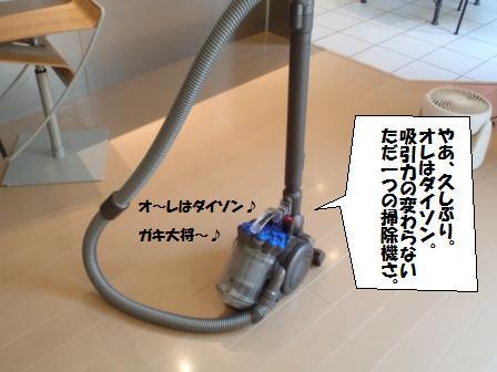11-100409003.jpg
