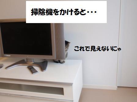 2-100525057.jpg