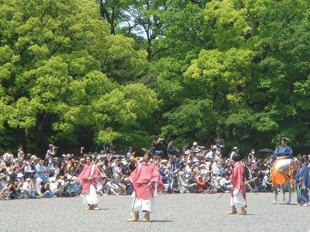 ごんちゃん 0055