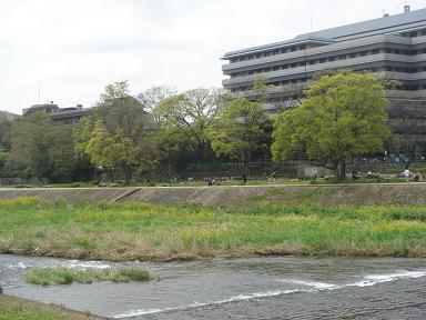 ごんちゃん 0033