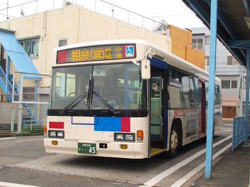 P3141060-1.jpg