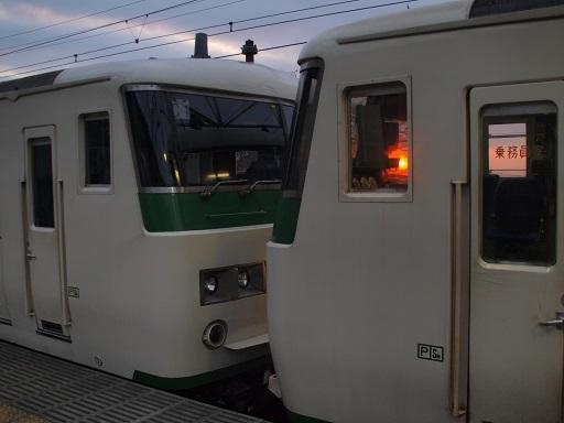 P3151123-1.jpg