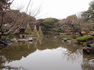 旧古河庭園9
