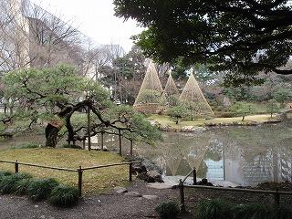 小石川後楽園14