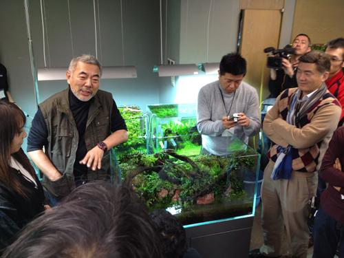 ADAレイアウト講習会 東海 岐阜 熱帯魚 水草 観葉植物販売 Grow aquarium