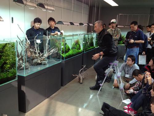 ADAレイアウト講習会2日目 東海 岐阜 熱帯魚 水草 観葉植物販売 Grow aquarium