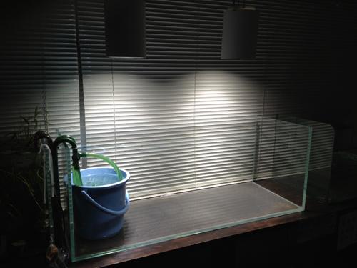 ADAキューブガーデン1200 東海 岐阜 熱帯魚 水草 観葉植物販売 Grow aquarium