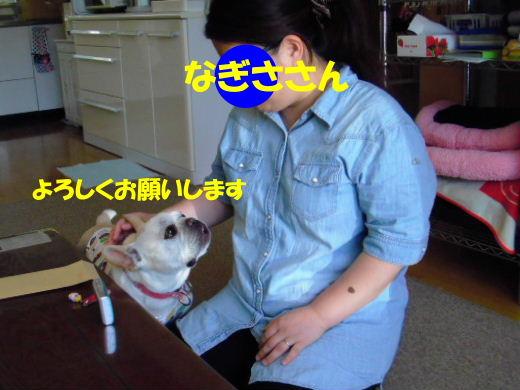 2011_0616bysaku0001b.jpg