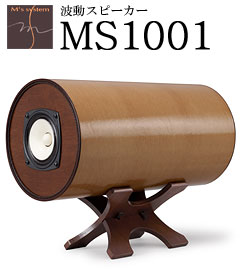 ms1001.jpg