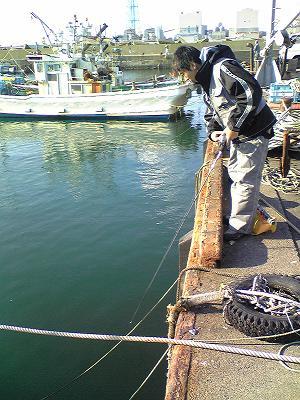 ひできと海3
