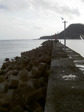 住吉漁港1