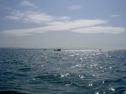 暖かい春の海