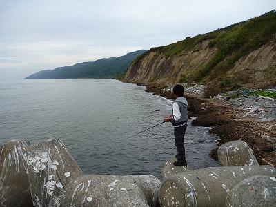 濁った海岸