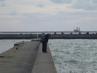 海を見るPoko