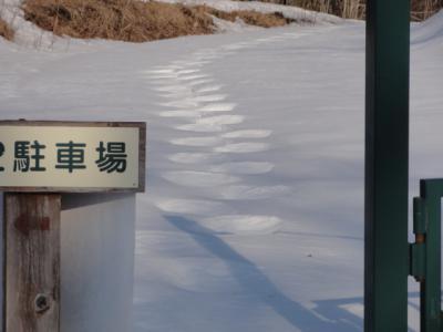 釧路町森林公園 016