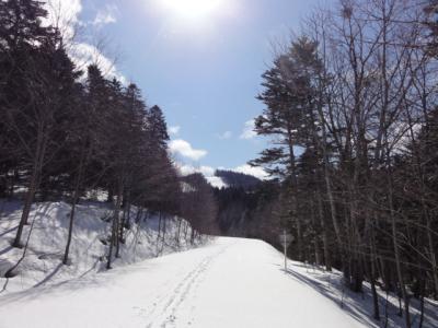 旧津別スキー場 021