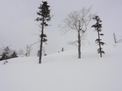 旧津別スキー場 048