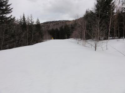 旧津別スキー場 104