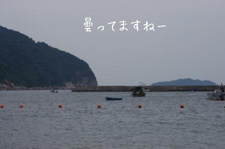 IMGP2537.jpg