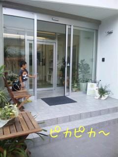 SH3800950001.jpg