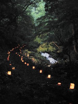 生田の滝ライトアップ