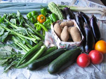 野菜セット