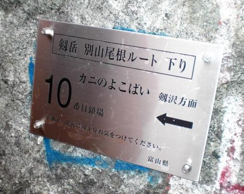 カニノヨコバ