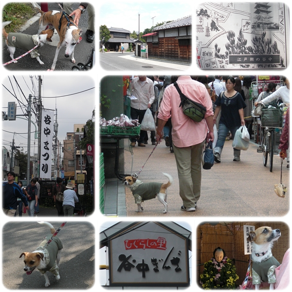 お江戸散歩03