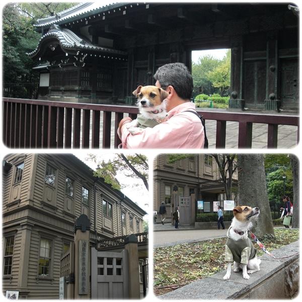 お江戸散歩02
