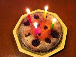 陽菜子4歳お祝いケーキ