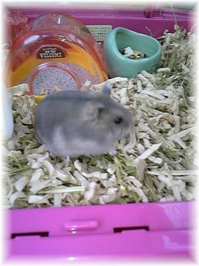 2010-01-23リン君