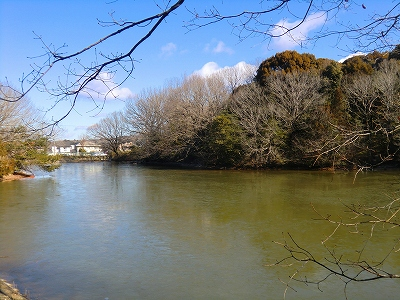 豊田市自然観察の森