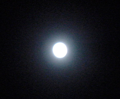 20110120 002a