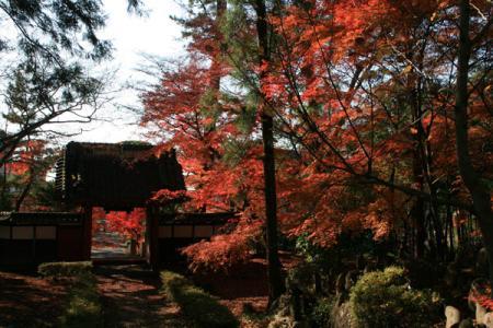 長林寺の秋