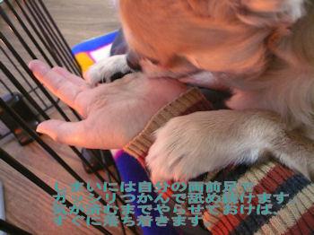 komusan_0129_004